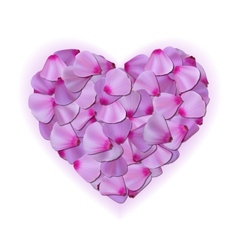 Pink heart of petals on white background vector