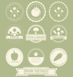Vegetable organic label vector