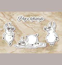 Piglifestyle vector