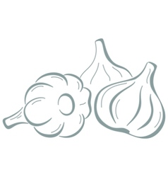 Garlic pictogram vector