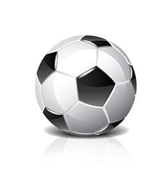 Object soccer ball vector