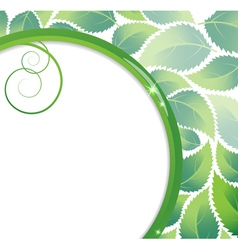 Green foliage background vector