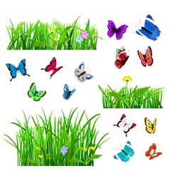 Green grass and butterflies vector