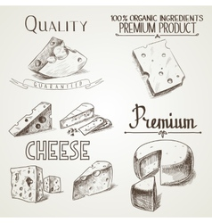 Hand drawn doodle sketch cheese with different vector