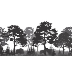 Seamless background summer forest silhouettes vector