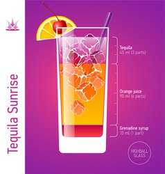 Tequila sunrise cocktail vector