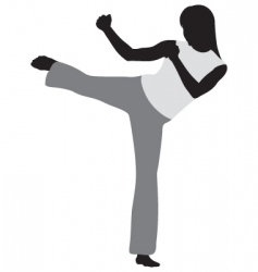 Martial art vector