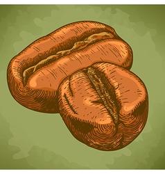 Engraving two coffee beans retro vector