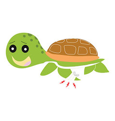 Green turtle painful isolated vector