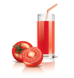 Object tomato juice vector