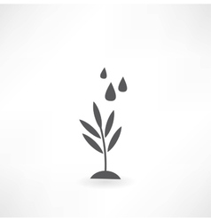 Watering of grass water drops icon vector