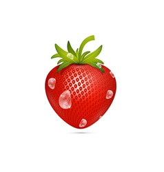 Strawberry with water drops vector