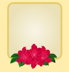 Golden frame with red rhododendron greeting card vector