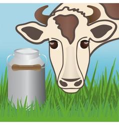 Cows vector