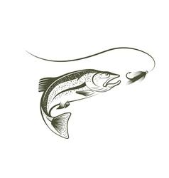 Jumping salmon and lure vector