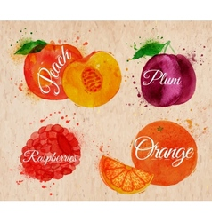 Fruit watercolor peach raspberry plum orange in vector