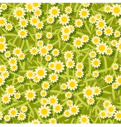 Yellow white flowers seamless background pattern vector