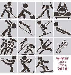 Winter sport icons vector