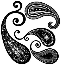 Paisley floral vector