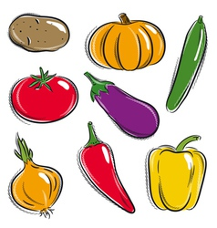 Set of vegetable potato pumpkin cucumber vector