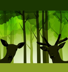 Forest deers vector
