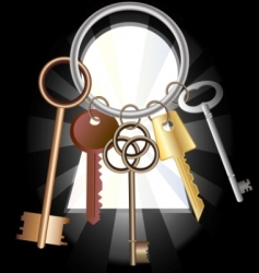 Bunch of keys vector
