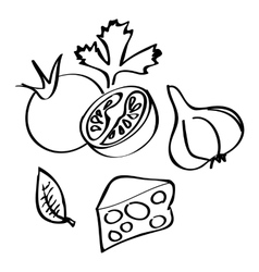 Collection of hand-drawn vegetables vector