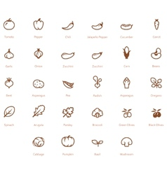 Vegetables icon set vector