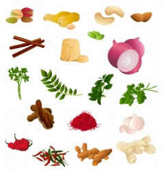 Indian produce vector