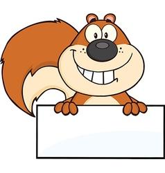 Cartoon squirrel design vector