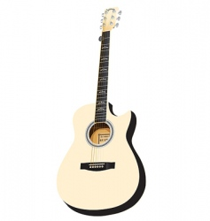 white acoustic cutaway vector