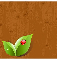 Wood background with leaves and ladybug vector