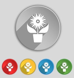 Flowers in pot icon sign symbol on five flat vector