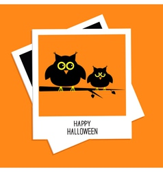 Instant photo with cute owls happy halloween card vector