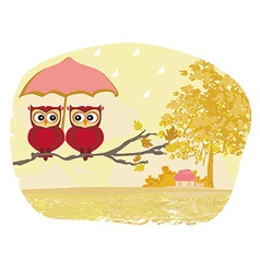 Owls couple under umbrella autumn rainy day vector