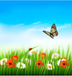 Nature summer colorful flowers with butterfly vector