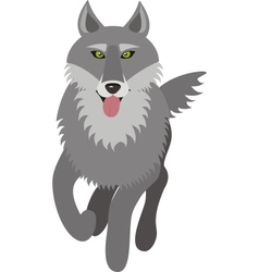 Wolf picture vector