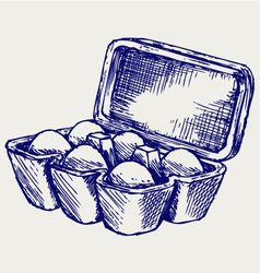Eggs in a carton package vector