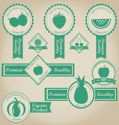 Fresh and organic fruit label design vector