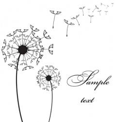 Two dandelion vector