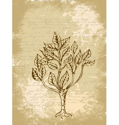 Tree sketch vintage background vector