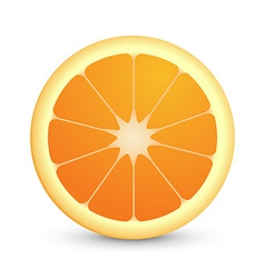 Round icon of juicy orange fruit vector