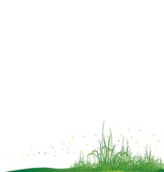 Beauty grass with butterfly vector