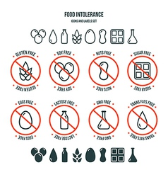 Food intolerance icons and labels set vector