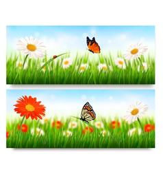 Summer nature banners with colorful flowers and vector