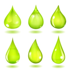 Green drops vector