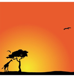 Background with african sunset vector