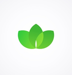 Green sign with three leafs vector