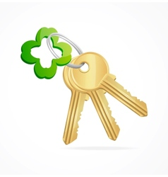 Gold keys and clover key chain vector