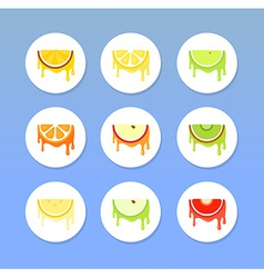Set of round fruit icons vector